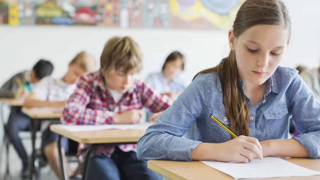 Responsabilitățile elevului
